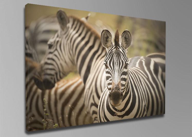 promoties fotogeschenken amp fotoproducten fotografie
